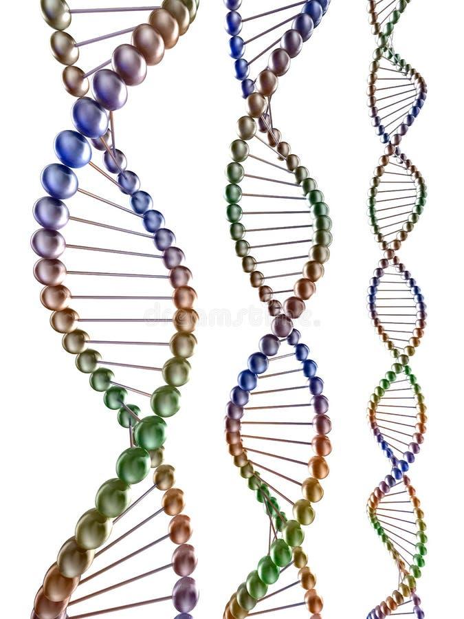 Codice genetico illustrazione di stock