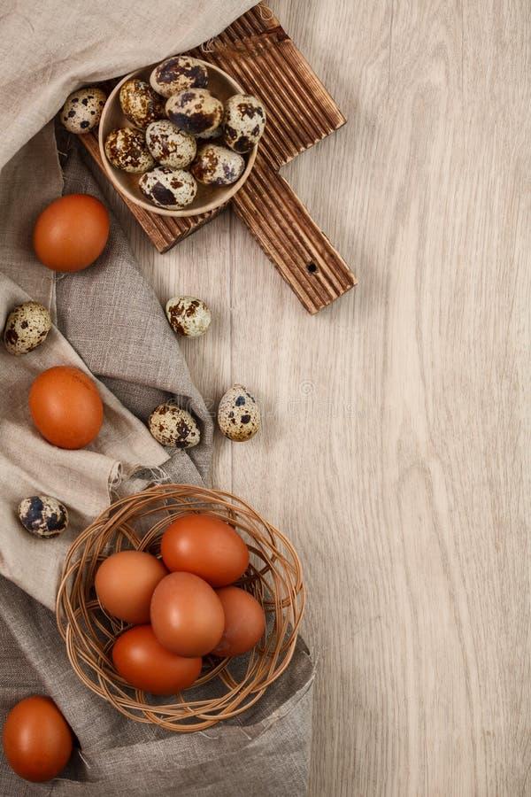 Codorniz e ovos da galinha com ramos do salgueiro imagem de stock