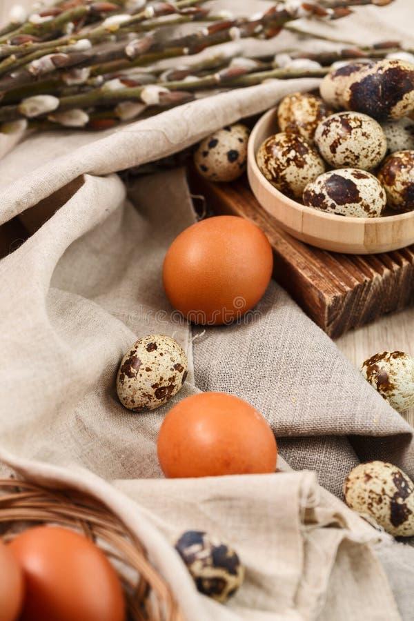 Codorniz e ovos da galinha com ramos do salgueiro imagem de stock royalty free