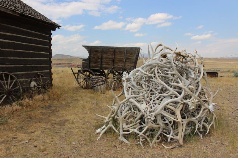 Cody - Wyoming imagem de stock