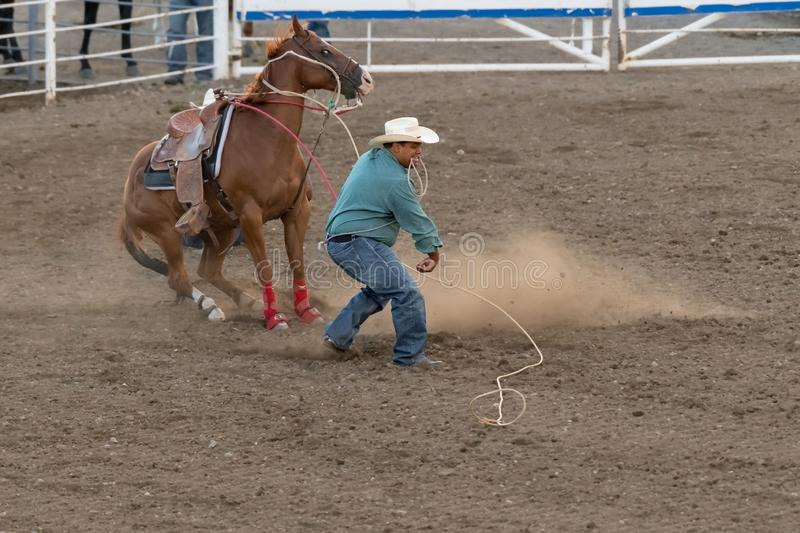 Stampede Park Midway Editorial Stock Image Image Of