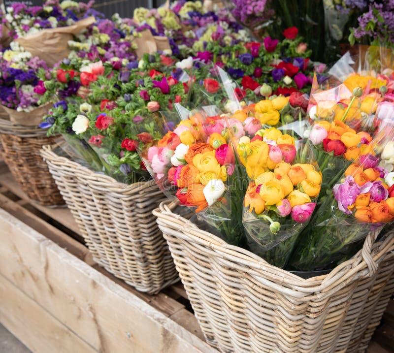 Codzienni kwiaty odpierający z rozmaitością świezi rżnięci kwiaty tak jak perscy jaskiery, anemonowy coronaria, denna lawenda obraz royalty free
