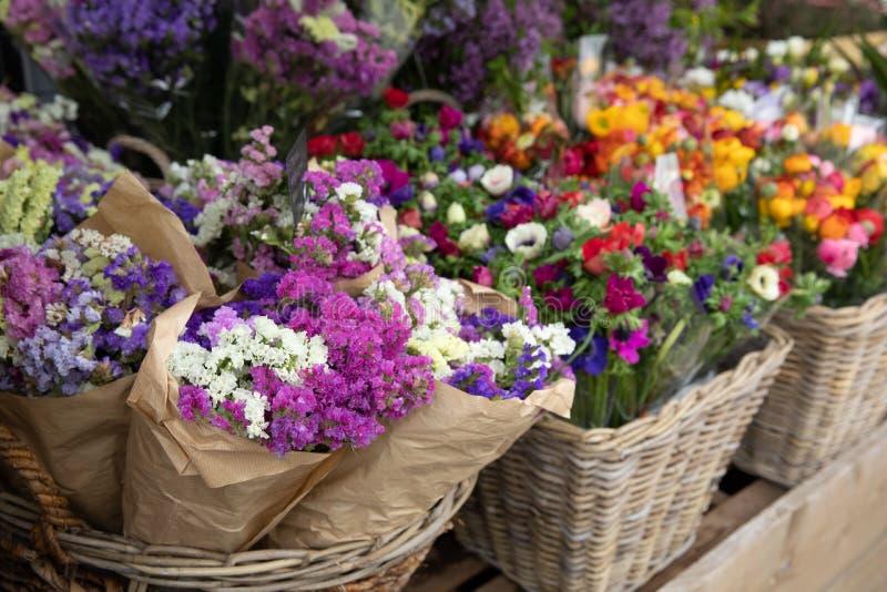 Codzienni kwiaty odpieraj?cy z rozmaito?ci? ?wiezi r?ni?ci kwiaty tak jak statice Salem lub limonium sinuatum, anemonowy coronari obrazy stock