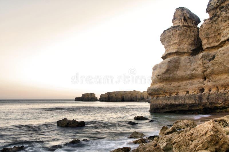 coelha пляжа стоковое фото