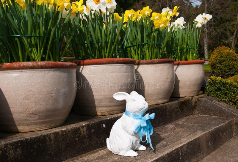 Coelhinho da Páscoa cerâmico do ornamento do jardim, com a decoração da fita azul Tempo de mola em Canadá foto de stock