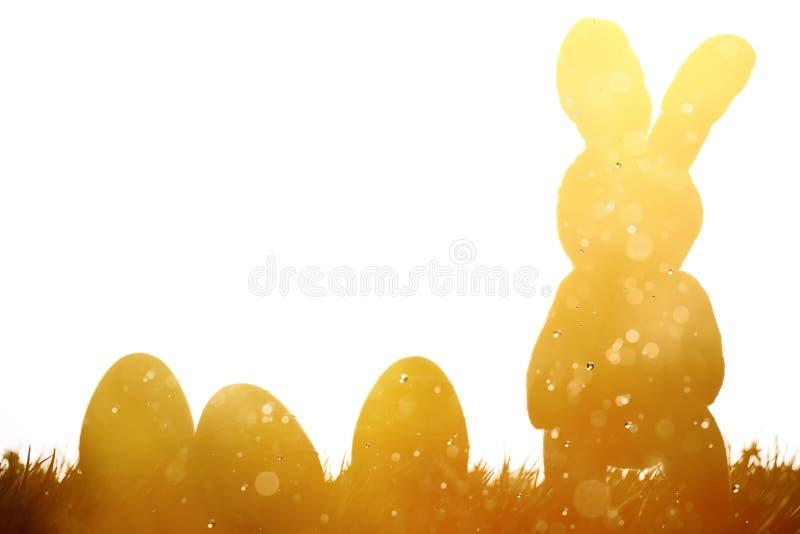 Coelhinho da Páscoa e ovos no prado fotografia de stock