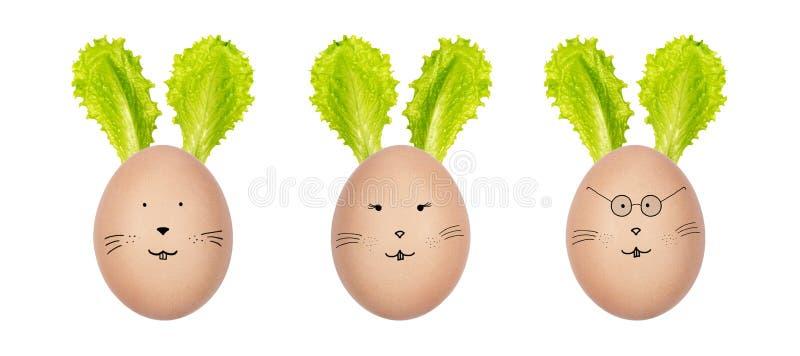 Coelhinhos da Páscoa feitos de ovos dos hen's e de folhas da salada verde Caras engraçadas do coelho tiradas nos ovos Decoração imagem de stock