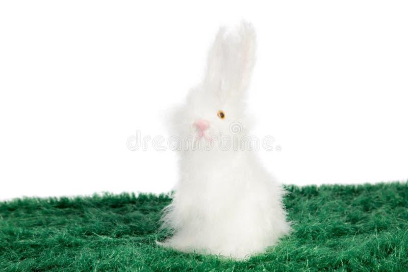 Coelho branco pequeno bonito na grama verde imagem de stock royalty free