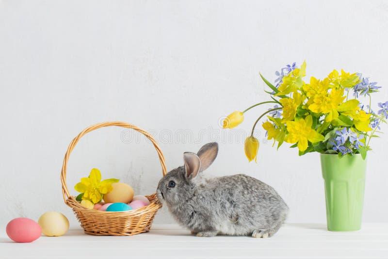 coelho com ovos da páscoa e flores fotografia de stock