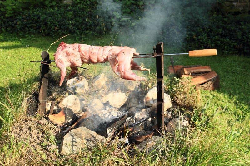 Coelho cozinhado no fogo aberto foto de stock