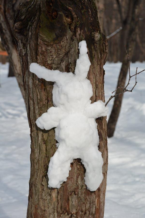 Coelho da neve na árvore fotos de stock