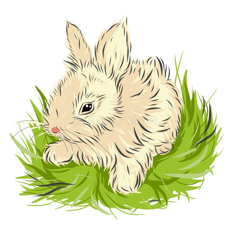 Coelho da Páscoa que senta-se na grama verde sobre imagem de stock