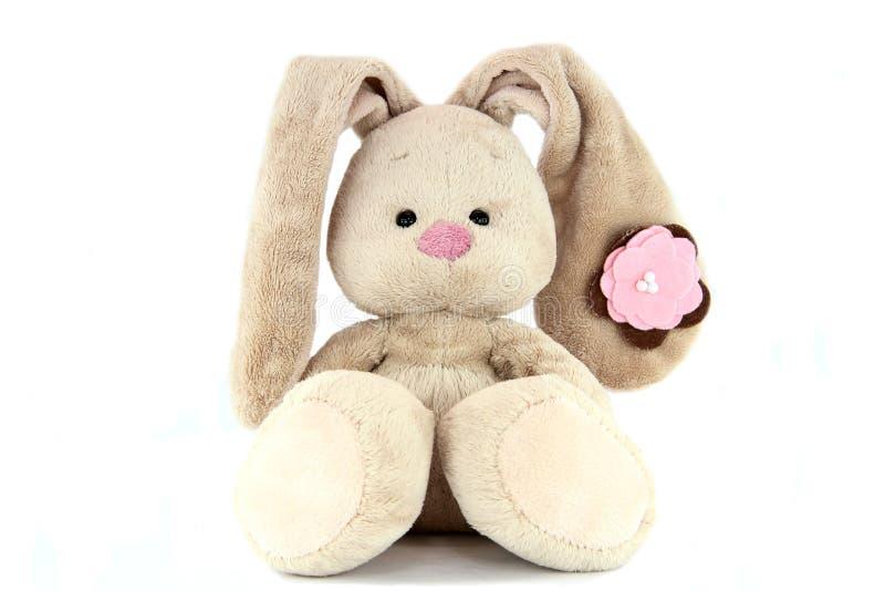 Coelho da peluche de Brown com nariz cor-de-rosa e flor na orelha isolada fotos de stock royalty free