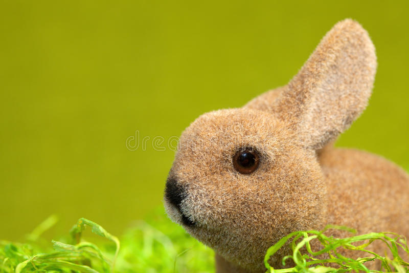 Download Coelho de Easter imagem de stock. Imagem de ninguém, espaço - 26514781
