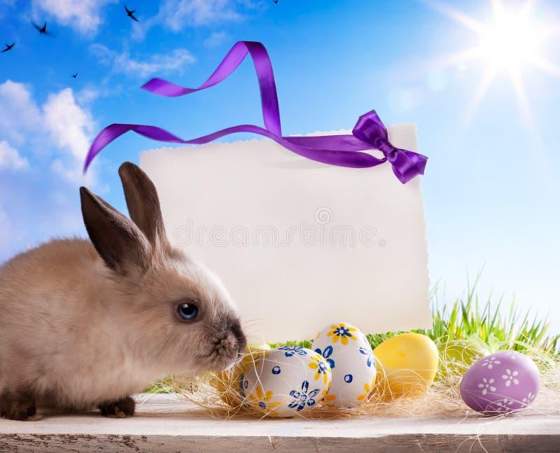 Coelho de Easter do cartão e ovos de Easter fotos de stock