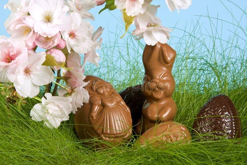 Coelho de Easter na primavera imagens de stock
