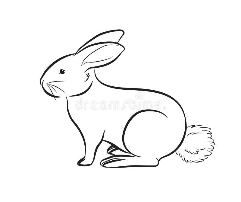 Coelho dos desenhos animados que esboça a ilustração do vetor