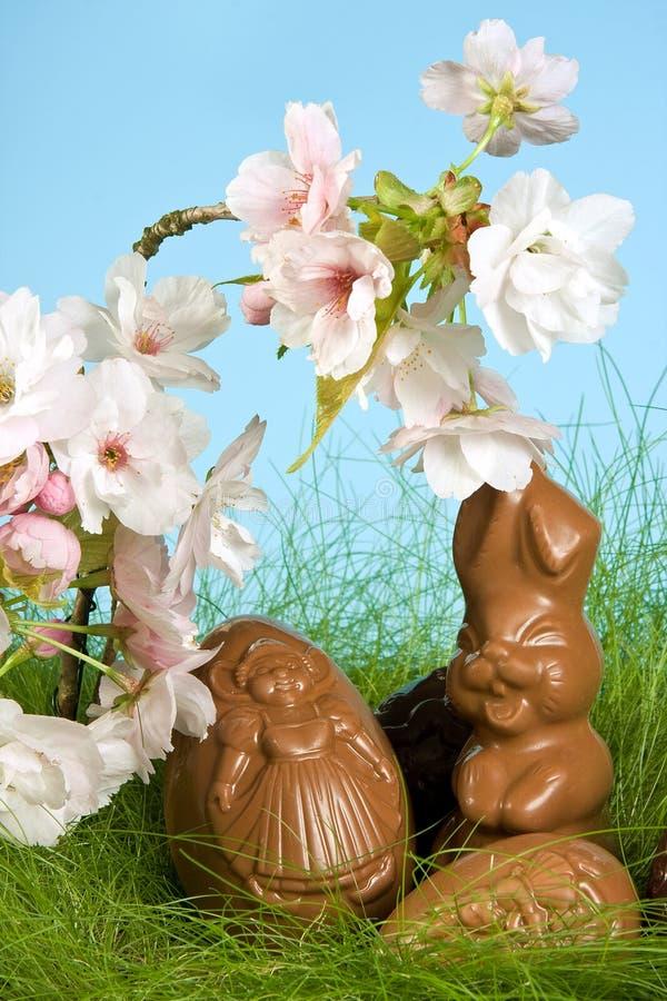 Coelho e flores de Easter fotografia de stock