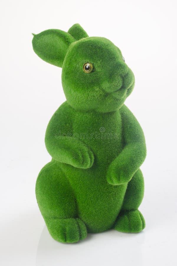 coelho ou coelho do verde em um fundo imagem de stock