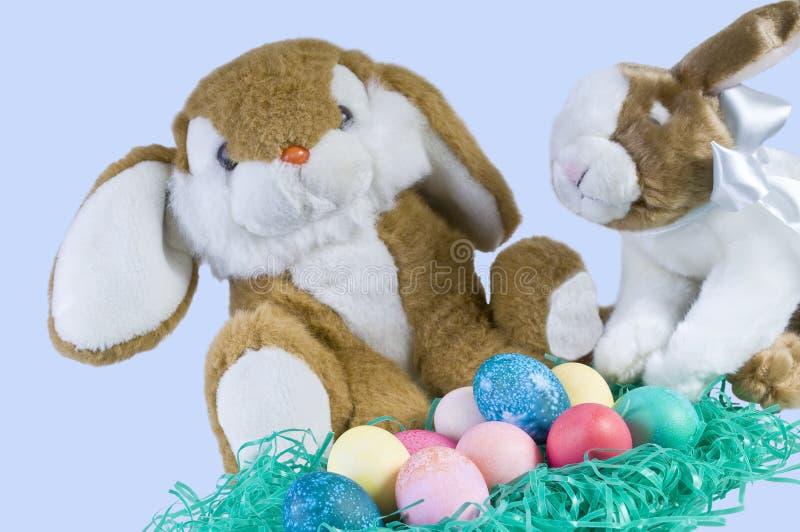 Coelhos de Easter imagens de stock royalty free