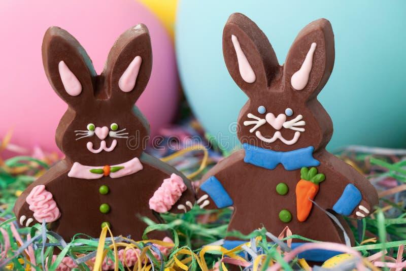 Coelhos de Easter fotos de stock royalty free