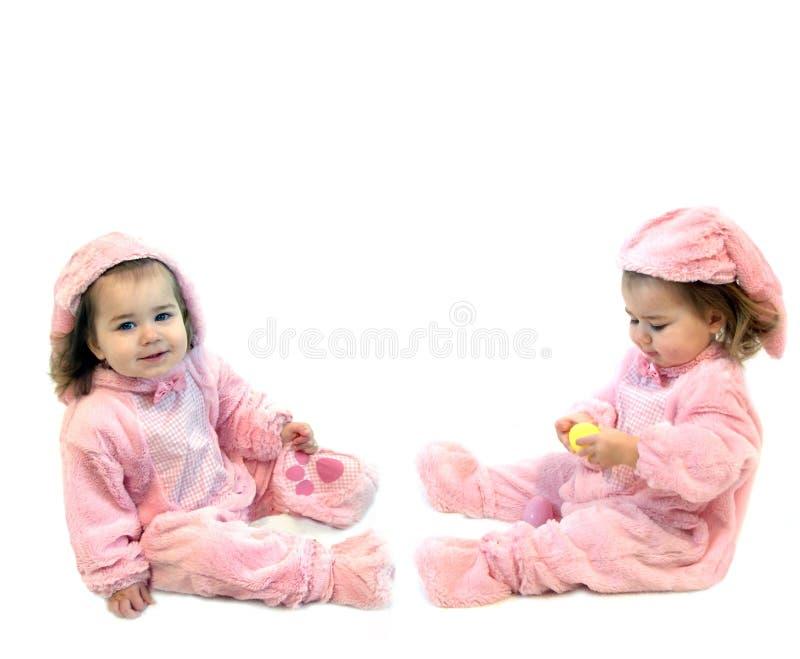 Coelhos para Easter fotografia de stock royalty free