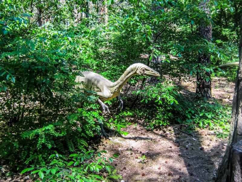 Coelophysisjacht in het Bos royalty-vrije stock afbeeldingen