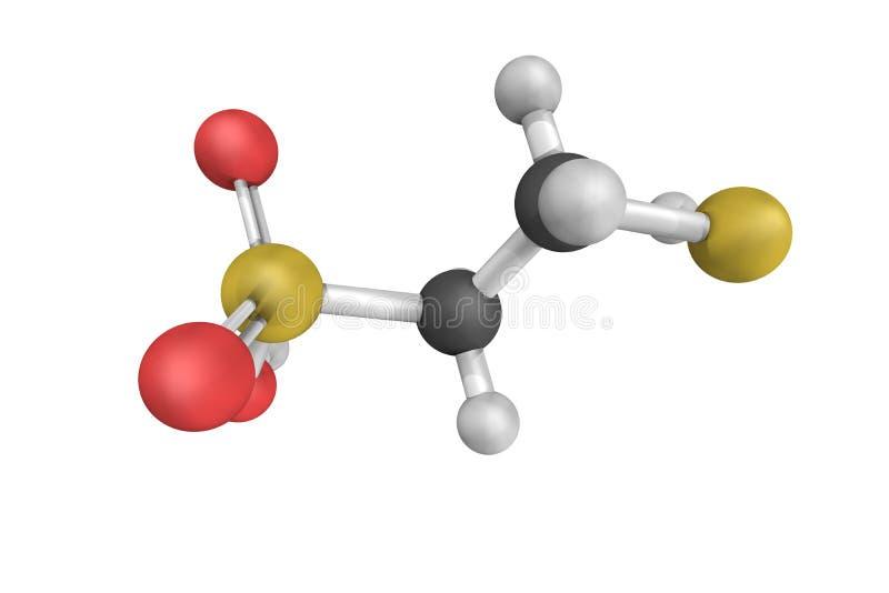 Coenzima m., un coenzima richiesto per le reazioni di metilico-trasferimento dentro immagini stock libere da diritti