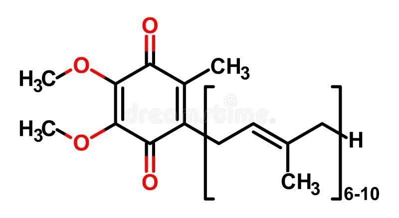 coenzymeformel q10 royaltyfri illustrationer
