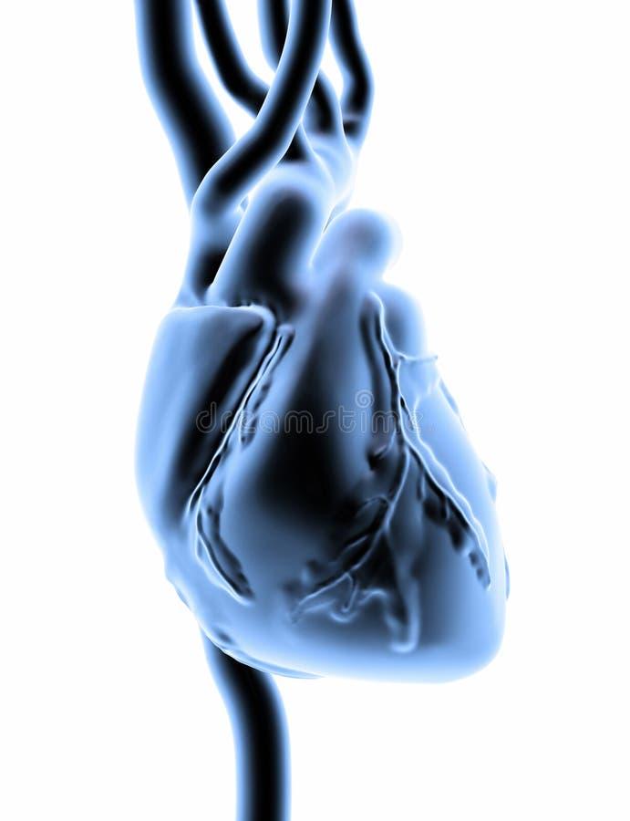 coeur 3D illustration libre de droits