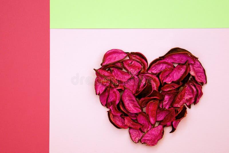 Coeur abstrait fait de pétales secs sur le fond géométrique coloré image libre de droits