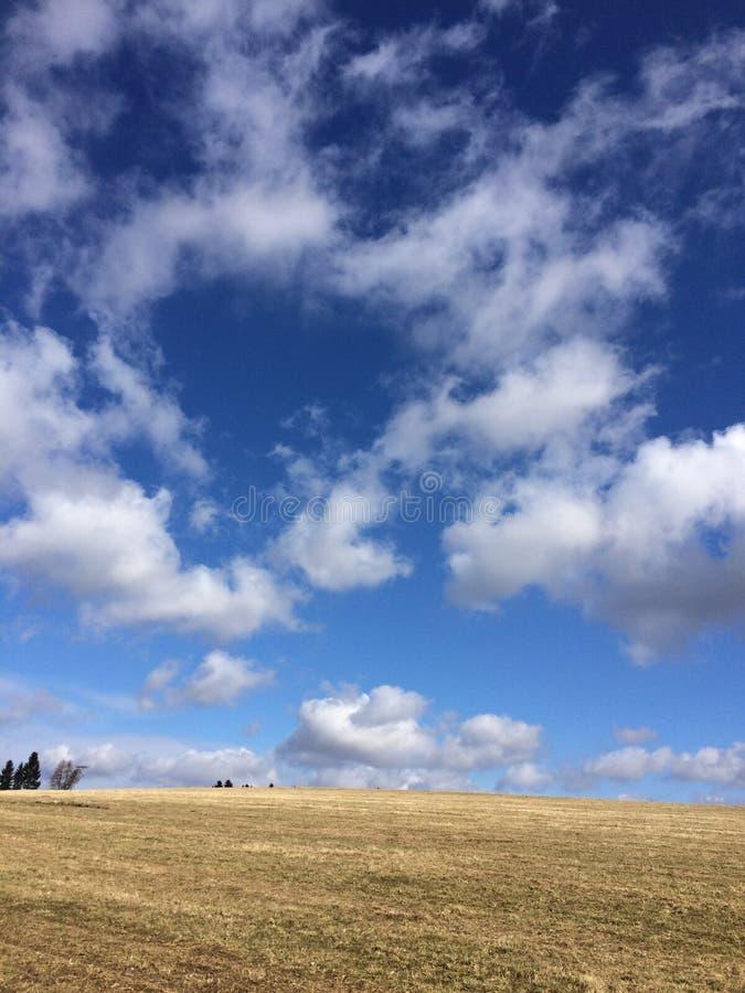 Coeur au ciel photos libres de droits