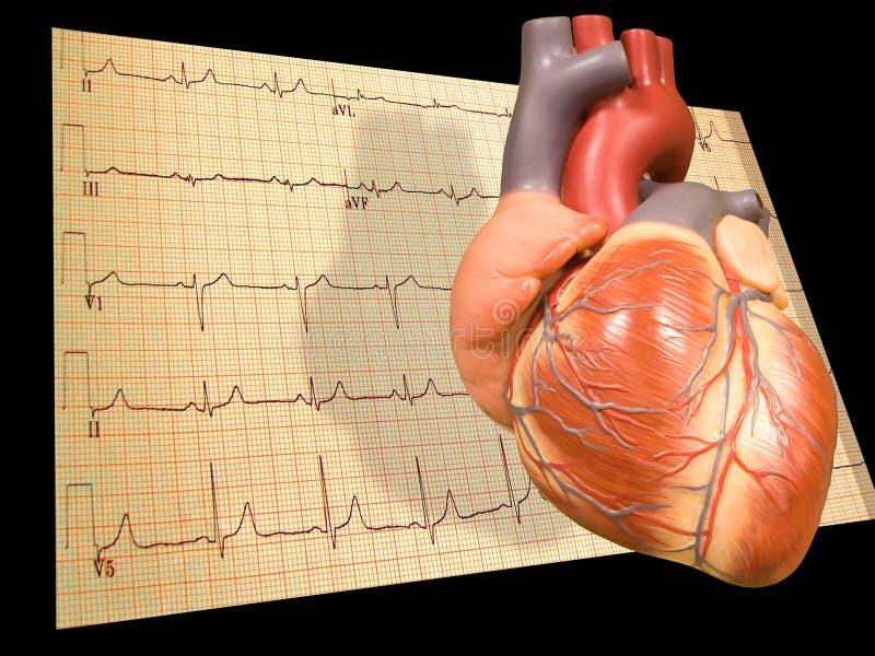 Coeur avec EKG illustration de vecteur