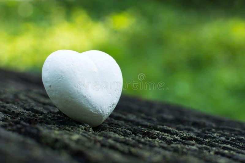 Coeur blanc sur la nature photographie stock libre de droits