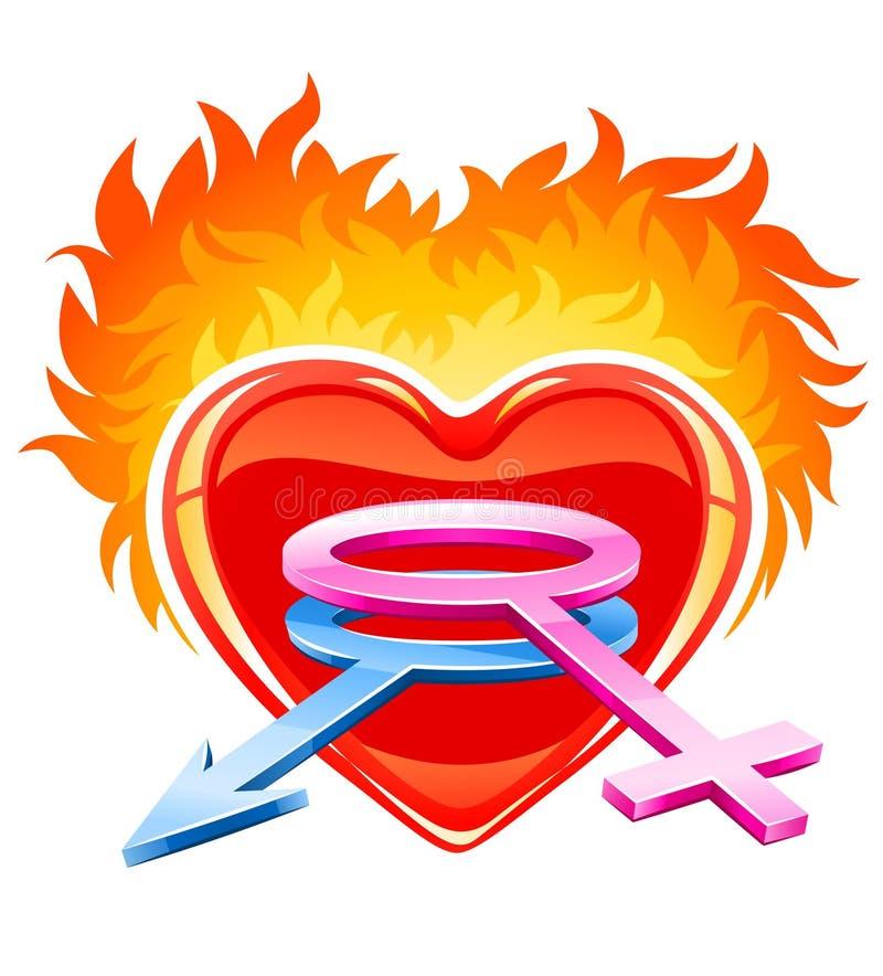 Coeur brûlant avec les symboles mâles et femelles illustration de vecteur