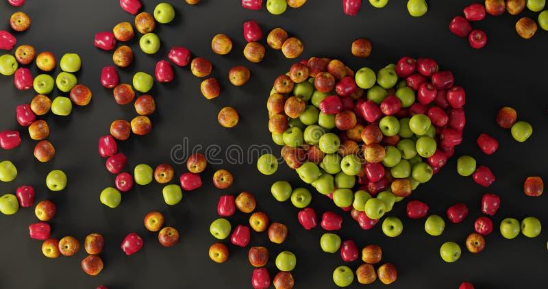 Coeur d'Apple ; concept sain et bon de nourriture photographie stock libre de droits