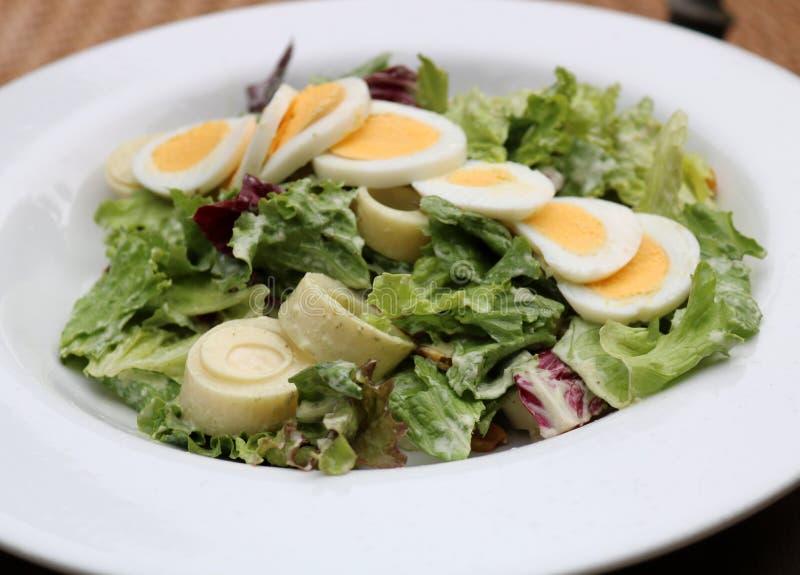 Coeur d'ensalada de palmito de salade de paume au Costa Rica photo stock