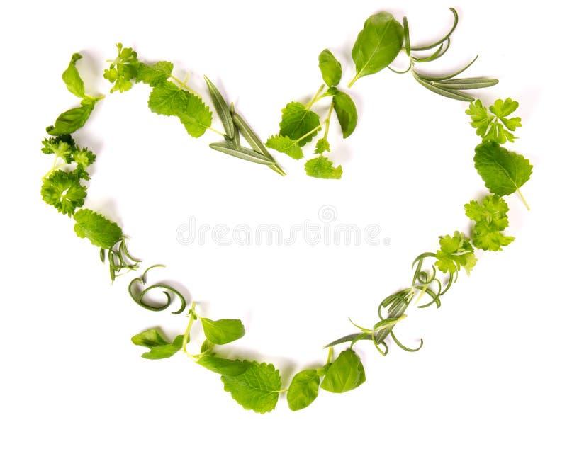 Coeur d'herbes images libres de droits