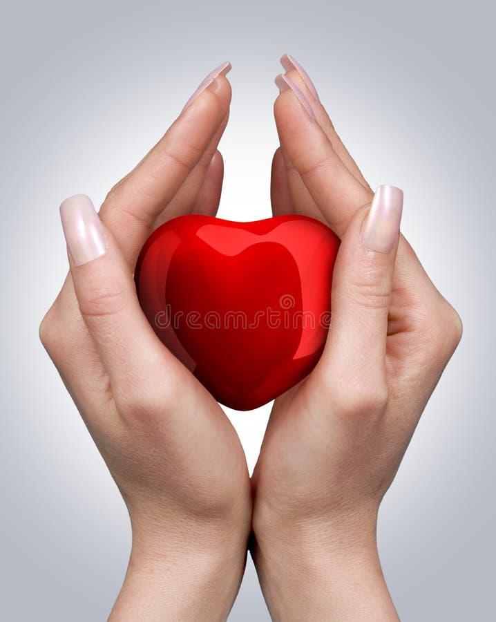 Coeur dans des mains photo stock