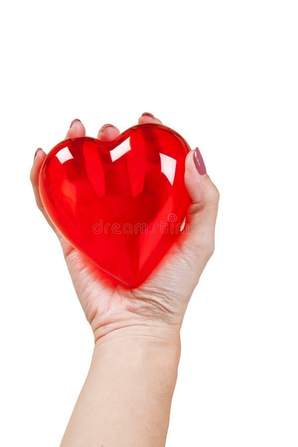 Coeur dans les mains d'isolement sur le fond blanc image stock