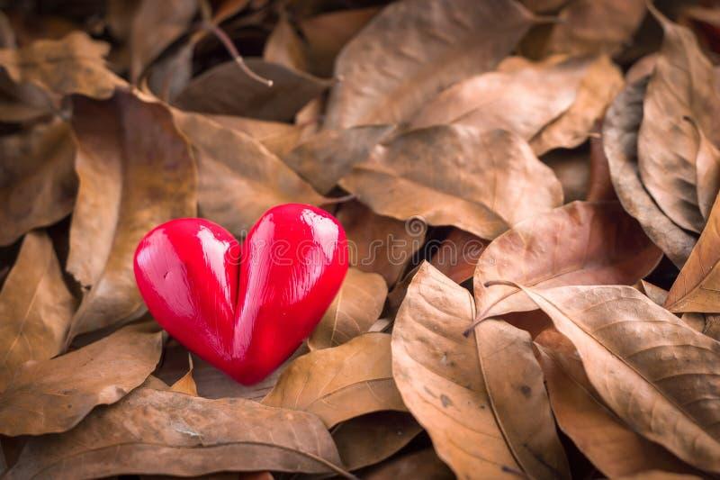 Coeur dans une pile des feuilles jpg photographie stock