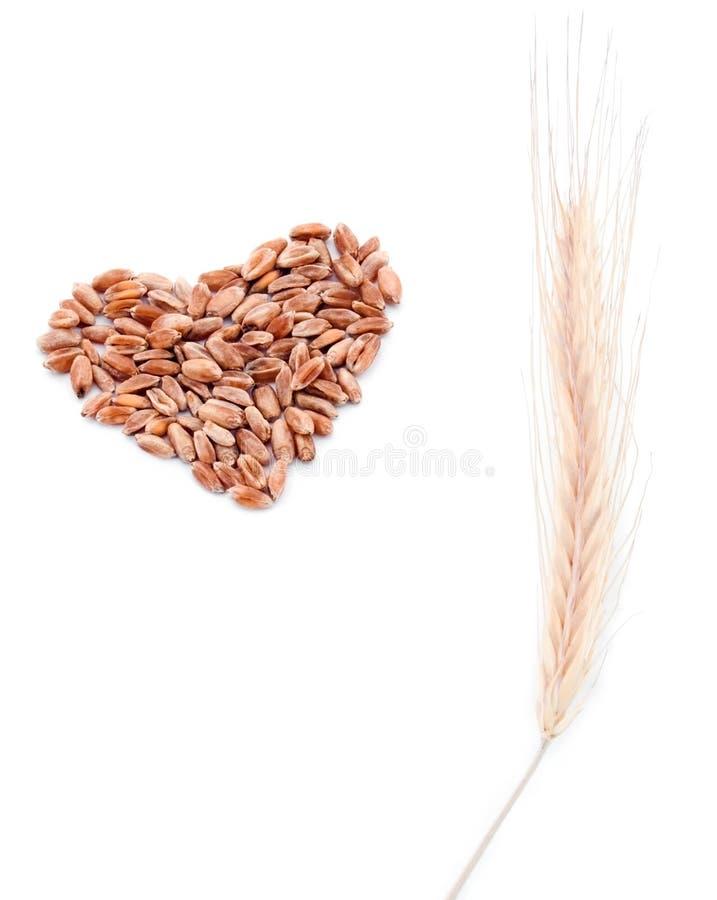 Coeur de blé et oreille de blé photographie stock libre de droits