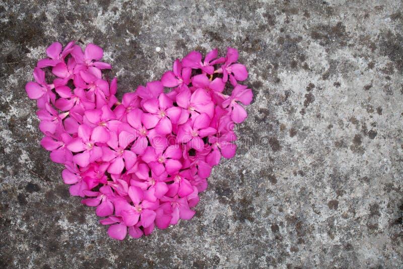 Coeur de fleur sur le plancher photo libre de droits