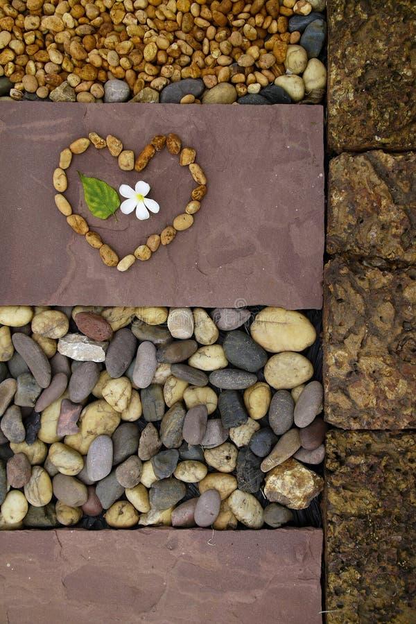 Coeur de nature photos stock