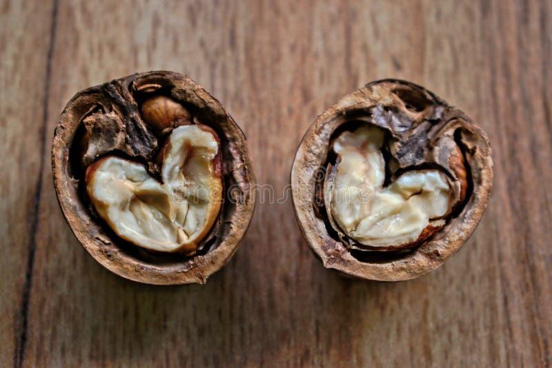 Coeur de noix photo stock