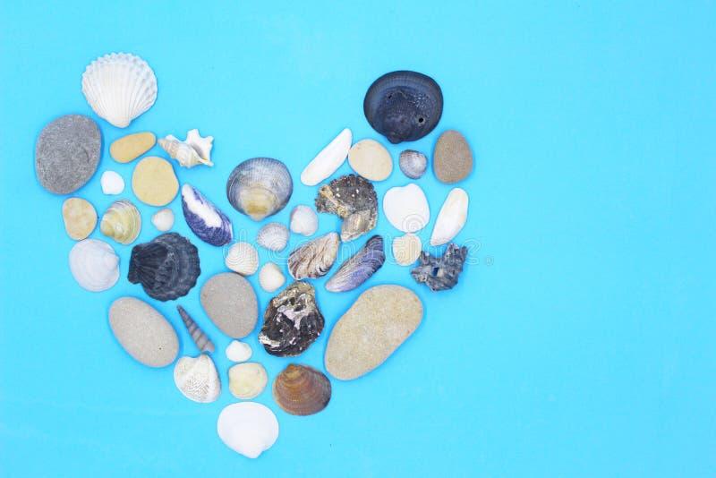 Coeur des coquillages sur un fond bleu photographie stock
