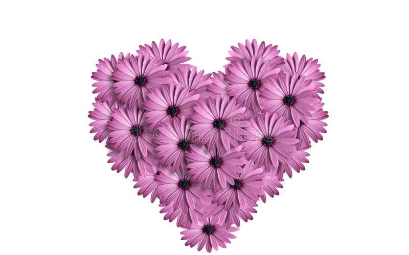 Coeur des fleurs photo libre de droits