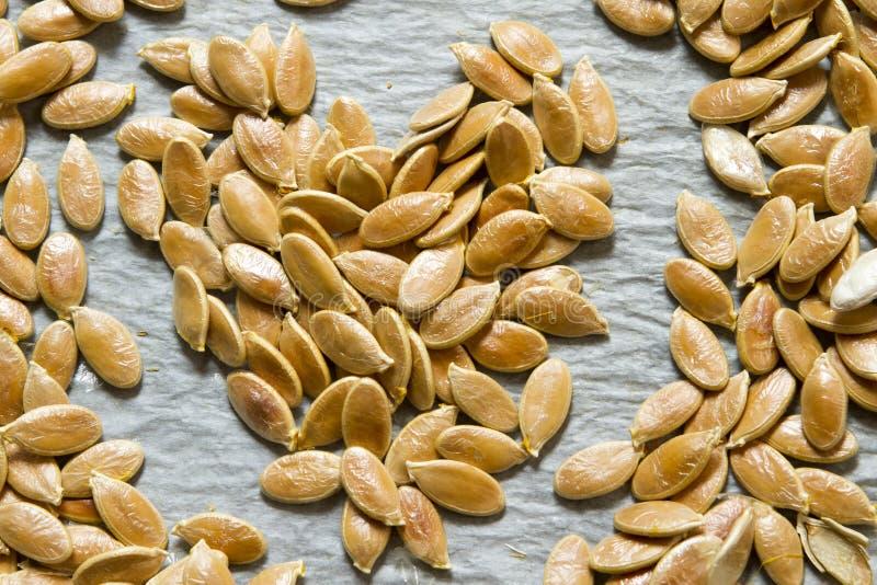 Coeur des graines de citrouille photographie stock