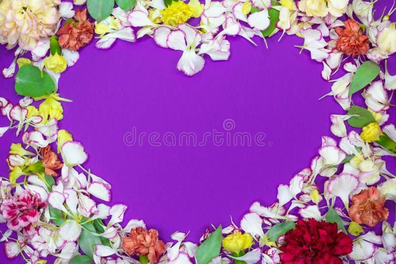 Coeur des pétales et des fleurs colorés sur le fond violet Concept d'amour Configuration plate photos stock