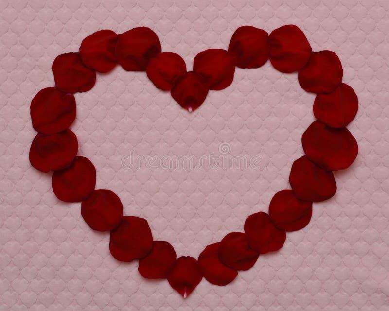 Coeur des pétales roses rouges photos stock